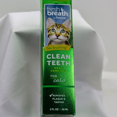 Clean Teeth Cat