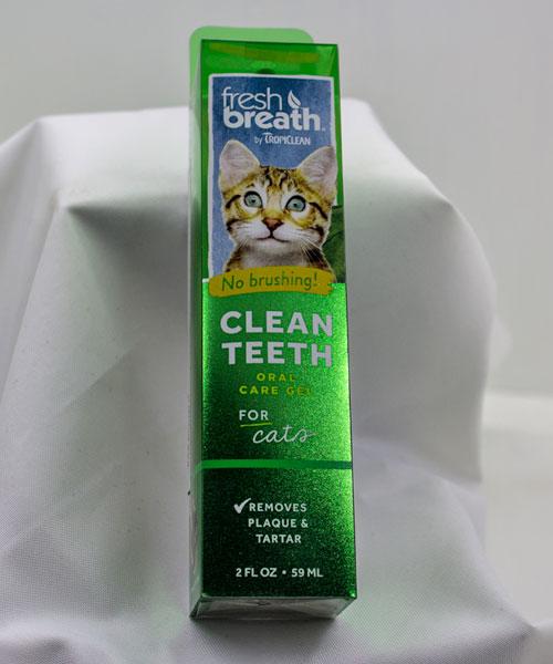 Clean Teeth Cat
